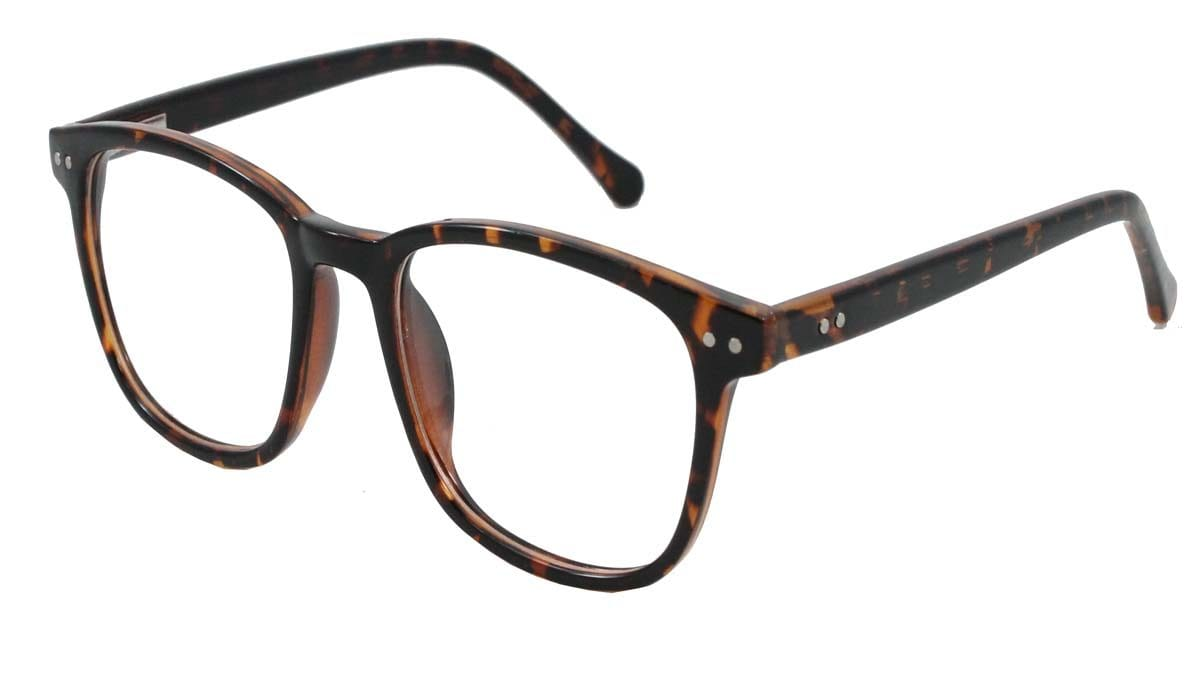 Atwood Tortoise Front