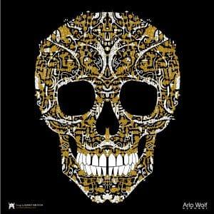 Barney Ibbotson Skull Lens Cloth