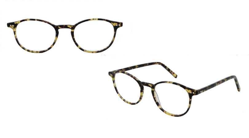 Bobbi frames in tortoise from different angles