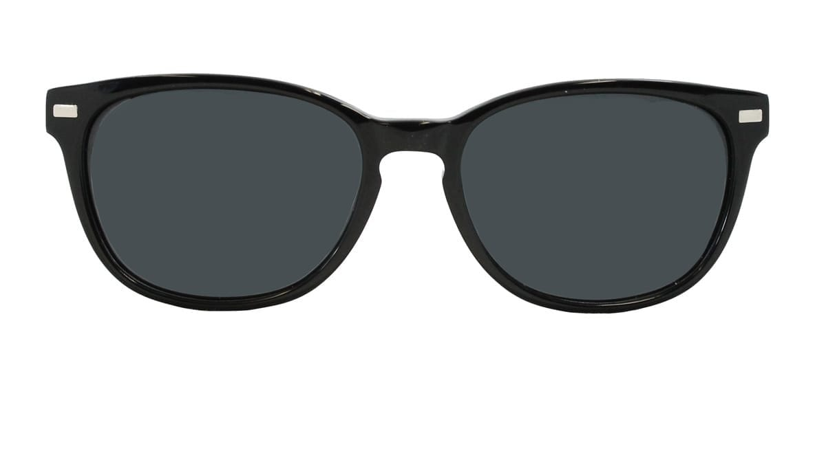 Harley Sunglasses in Black