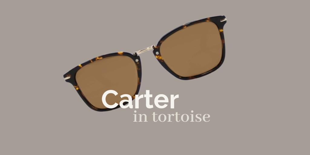 Carter Sun / Tortoise